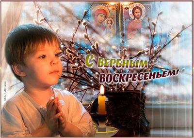 Можно ли ломать вербу в Вербное воскресенье